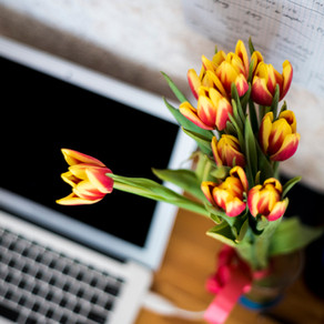 Blogging from Home