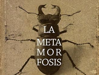 metamorfosis.jpg