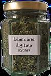 Laminaria%20digitata_edited.png