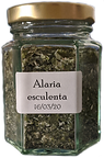 Alaria%20esculenta_edited.png