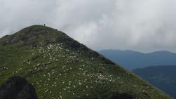 Orsa, au coeur des Pyrénées ariégeoises, Vincent Benedetti