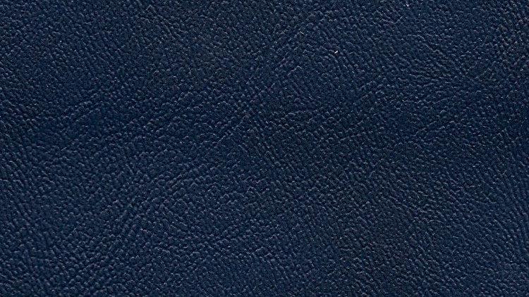 PIX-626, Palm Island - Commodore Blue