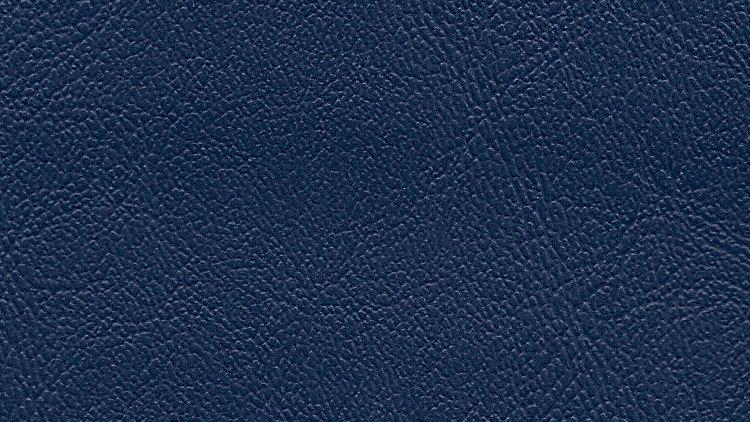 PIX-628, Palm Island - Steel Blue