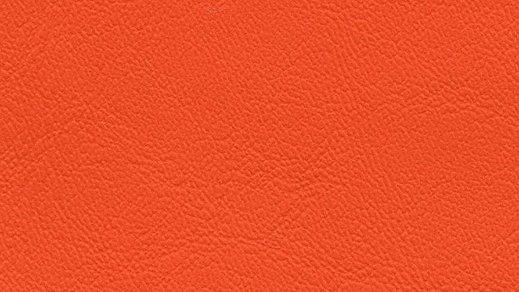 PIX-640, Palm Island - Orange Peel