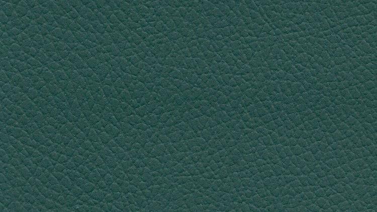 CIX-534, Caprina Island - Patina Green