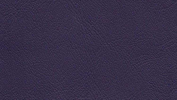 PIX-635, Palm Island - True Purple
