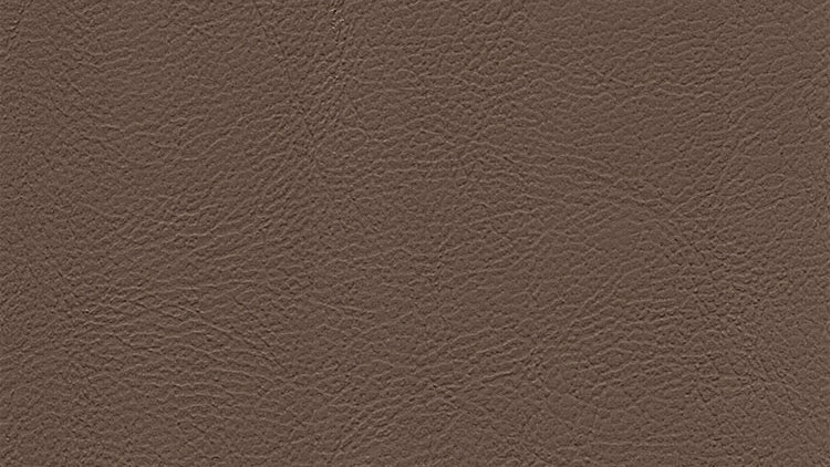 CPX-7842, Caprice Light Frost Beige