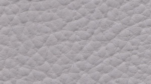 XTR-610, Xtreme - Cool Gray
