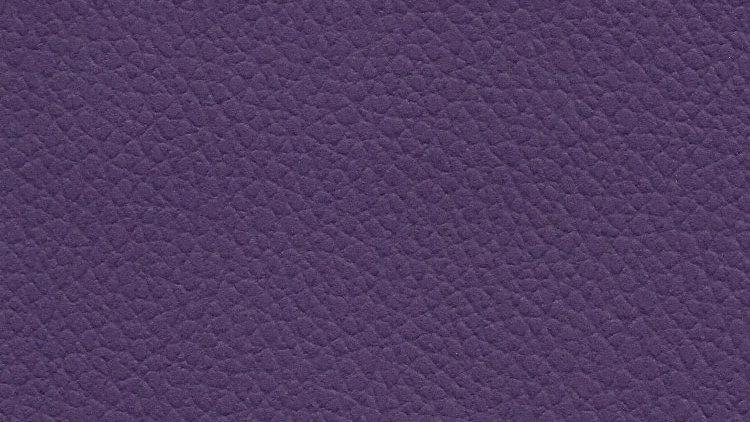 CIX-536, Caprina Island - Blush Purple