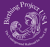 bpusa logo (2).png