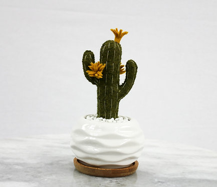 Saguaro Cacti MustardFlower