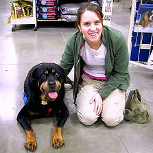 Rocky the Rottweiler Dog Training Puyallup WA Dog Training Tacoma WA Dog Training