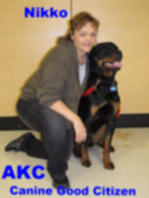 Nikko the Rottweiler AKC Canine Good Citizen Rocky Junior's Dog Training Service Puyallup WA