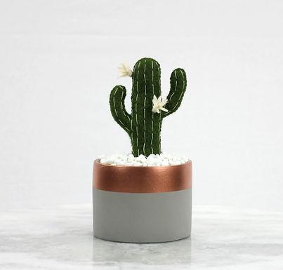 Saguaro Cacti GreyPot