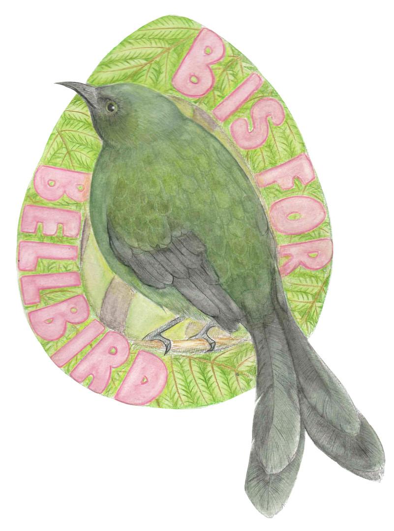 B is for Bellbird