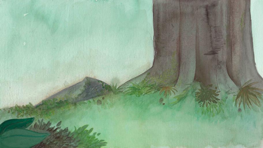 Ipil Tree Base