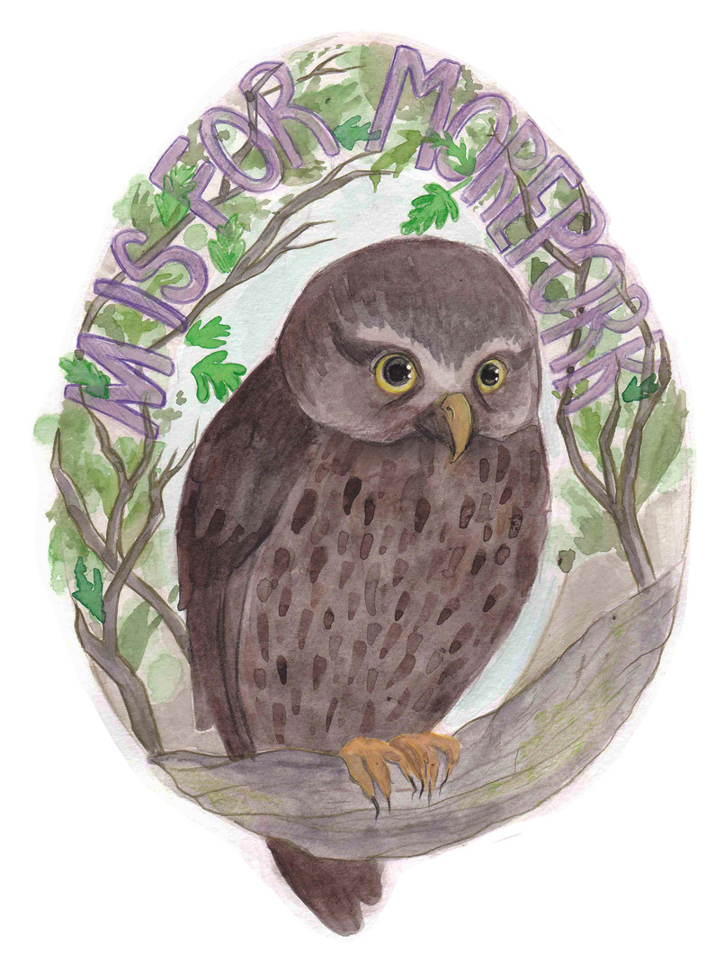 M is for Morepork