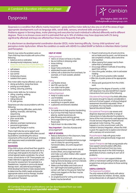 Dyspraxia Information Sheet 2