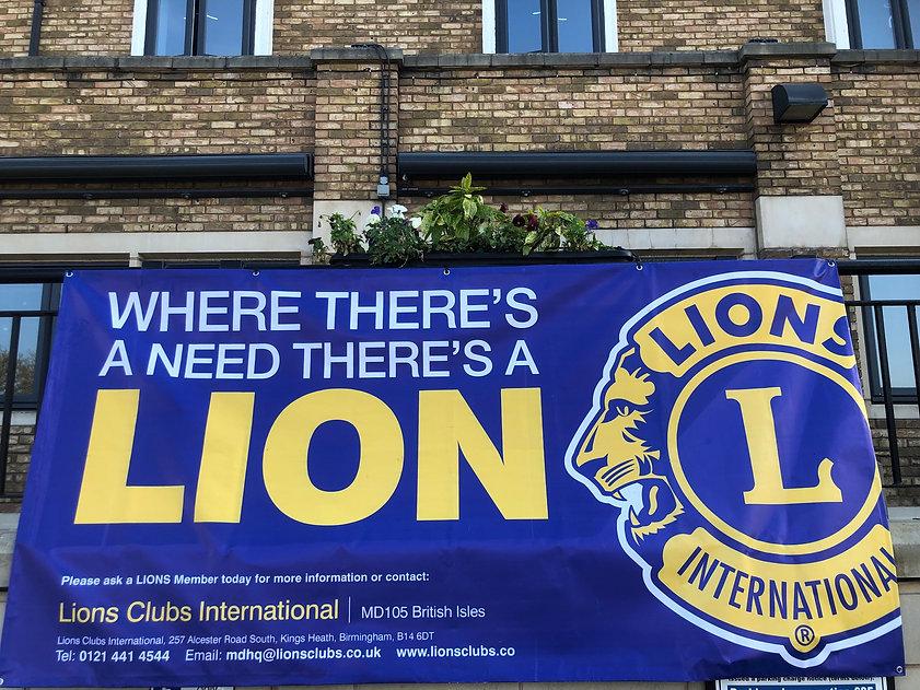 Lion's Banner.jpg