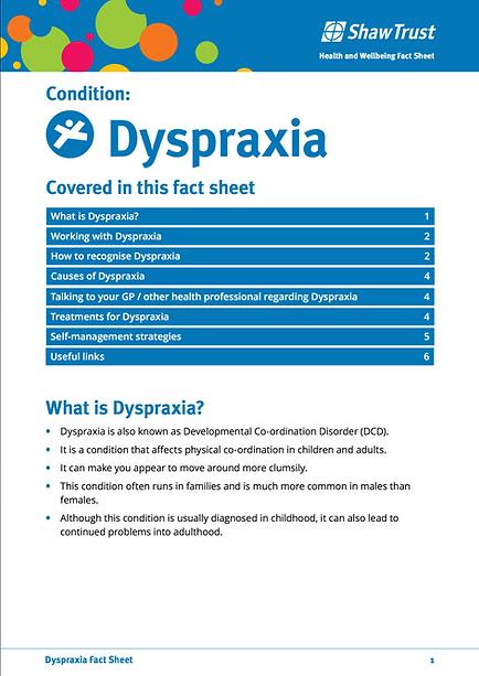 Dyspraxia Fact Sheet 3