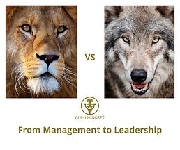 leadership guru-mindset.png