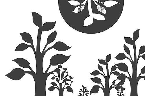 Plant 11 - Trees