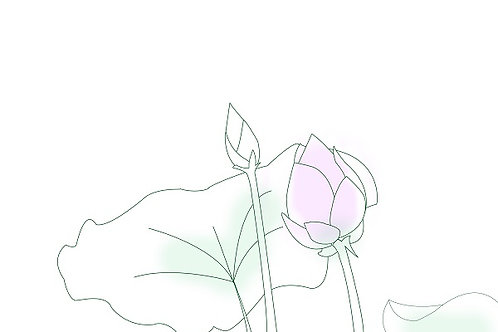 Plant 2 - Lotus
