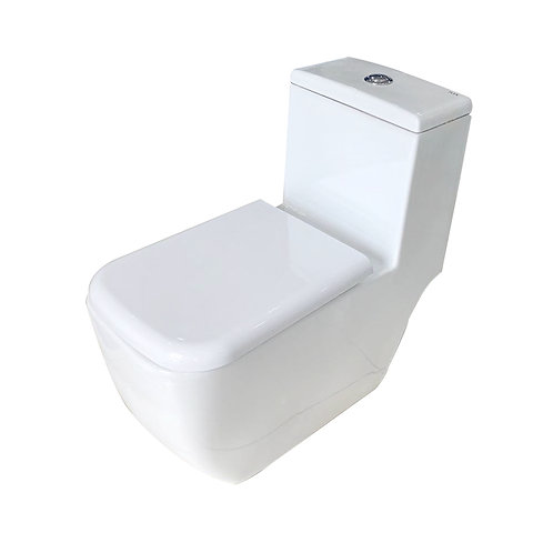 RAK One-Piece Dual-Flush Fully Concealed Toilet
