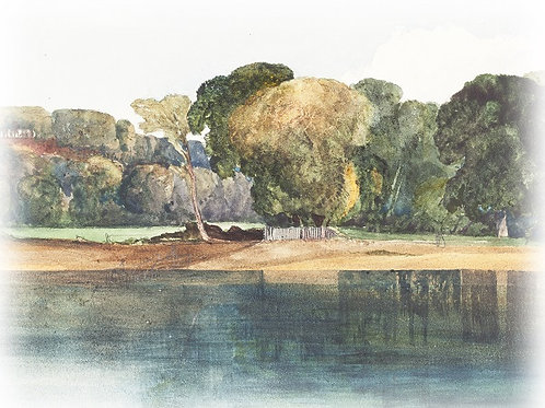 illustration 14 - Landscape with Trees and Water