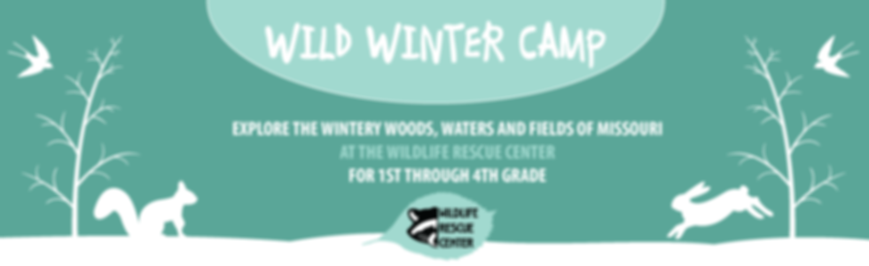 Missouri Wildlife Rescue Center Camp