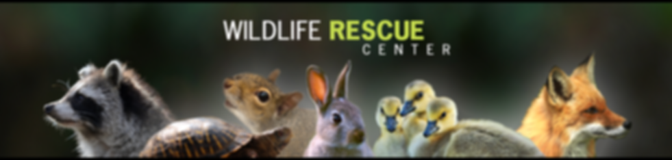 Missouri Wildlife Rescue Center