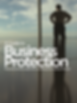 Business Protection