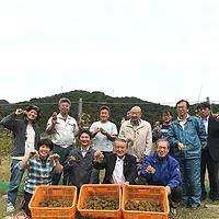 根浜MIND-事業内容-ワイン栽培集合写真