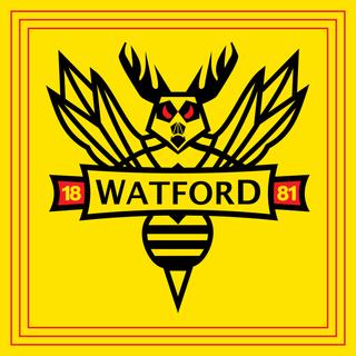 Watford Main 6.png