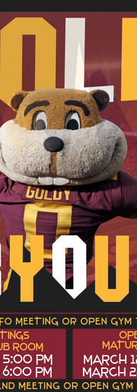 2019 Goldy Tryout Image