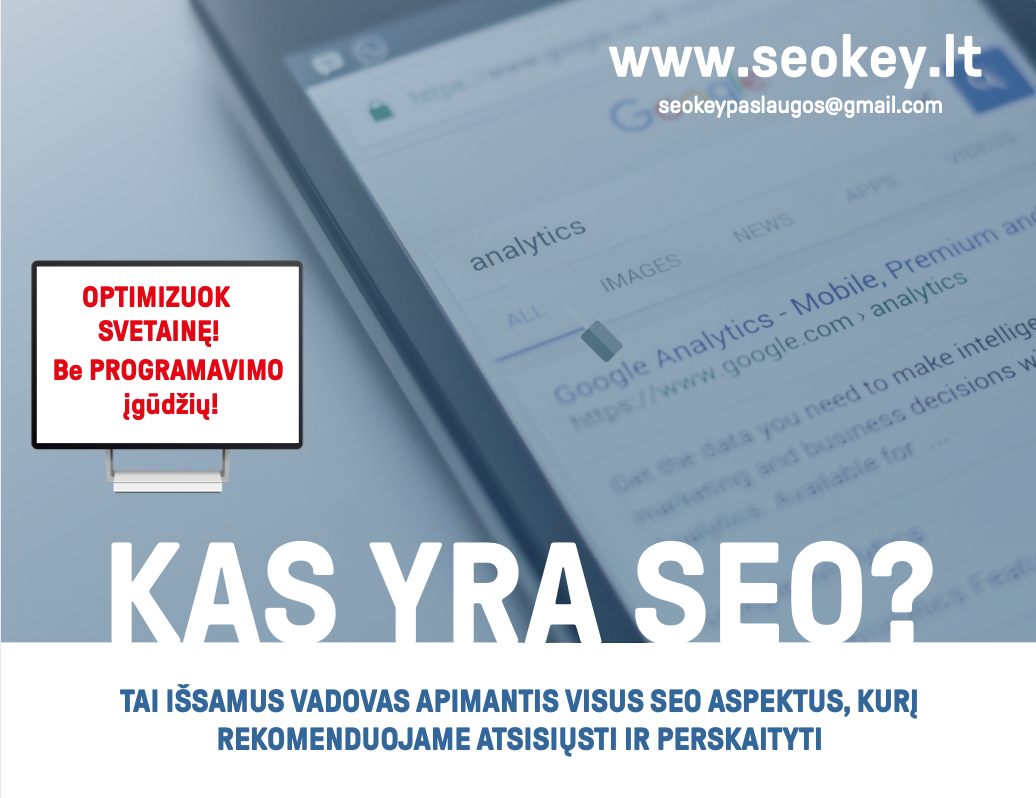SEOkey.lt E-book 1.png