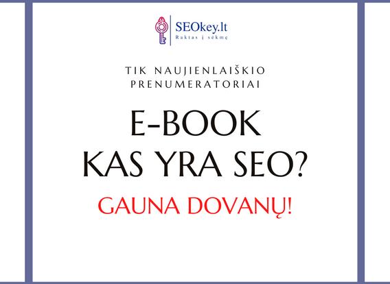 SEOkey.lt E-book 2.png