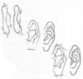 orecchio2.jpg