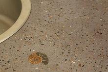blat mozaic - amonit 1.jpg