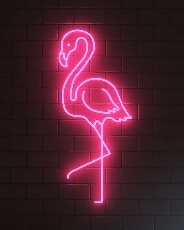 Flamingo_4-5_v01_01.jpg