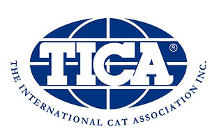 tica the international cat associatio inc.
