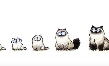 Simon's Cat Logic - Ragdolls
