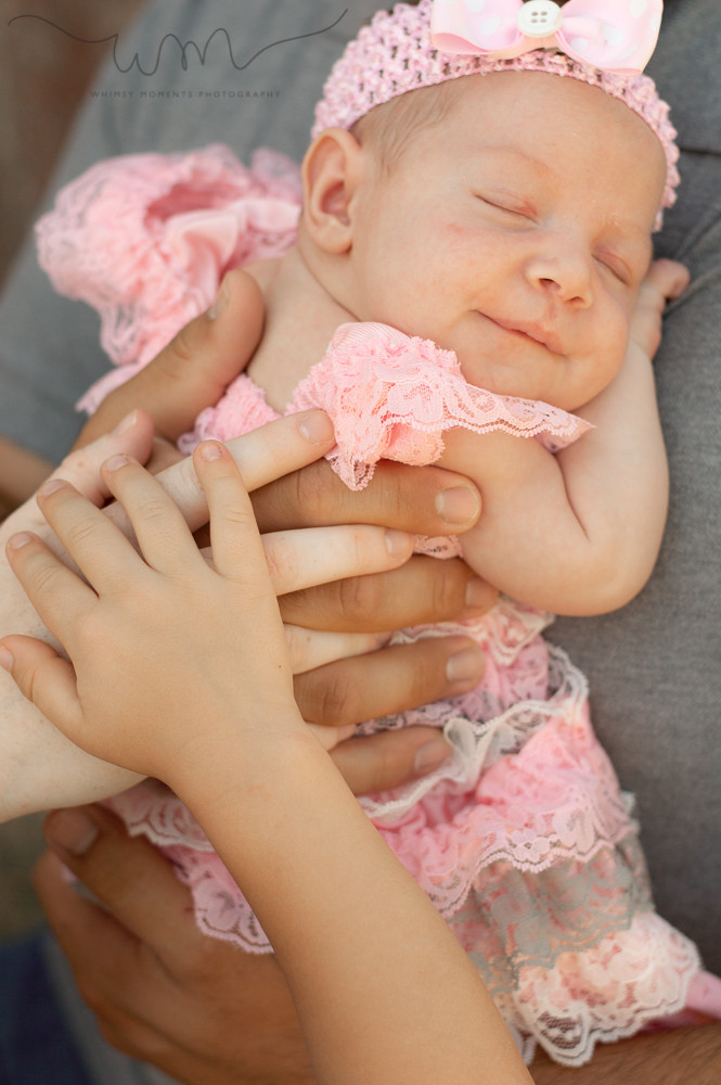 Newborn Session in Akron, Colorado baby girl all family hands on her back by Whimsy Moments Photography