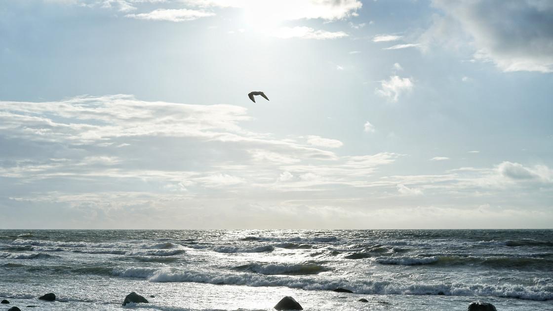 Das Meer ist zu