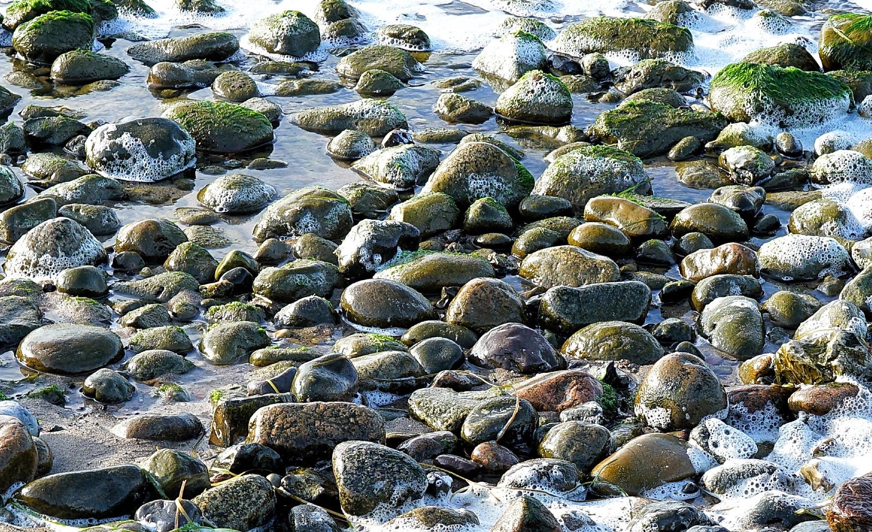 Wer findet den interessantesten Stein?