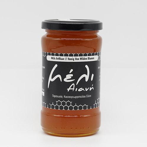 Honig von wilden griechischen Blumen 430g / aus Kozani
