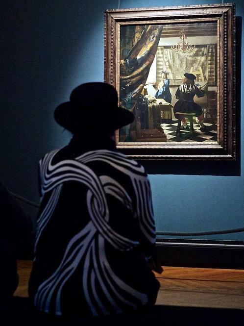 Vermeer - Stefan Draschan