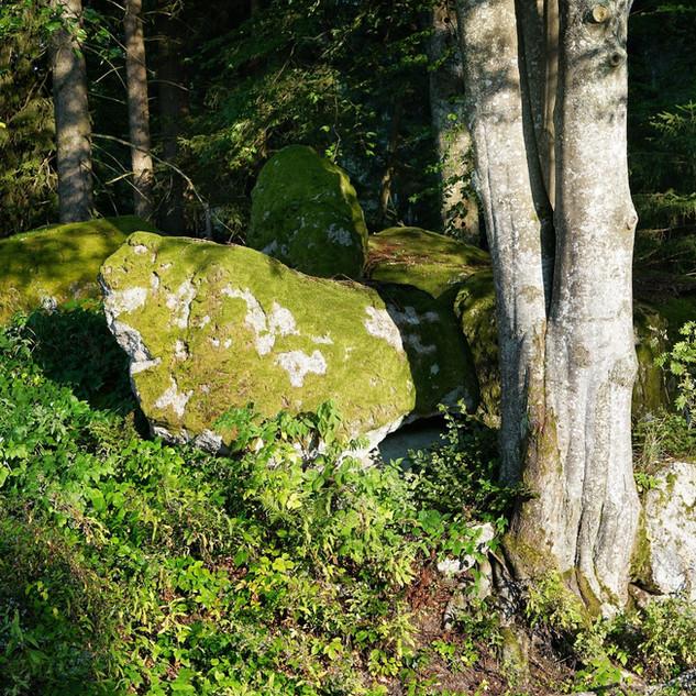Naturfelsen im Garten