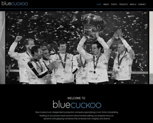 Blue Cuckoo