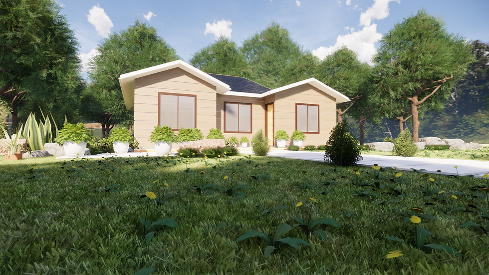 DESIGN 5  74m2 LOUISIANA  3 Bed Bath 1 (NON Exposed Rafters)